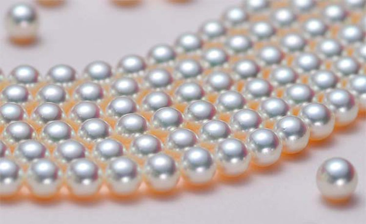 Scientist Employs RFID Technology to Revive Cultured Pearl Farming in Hong Kong